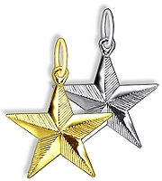5 Point ribbed Star